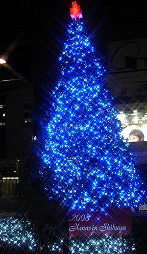 Christmastree_2008
