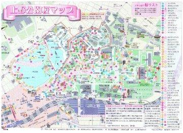 Sakuramap01